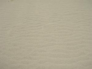 20100521鳥取砂丘4