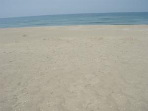 20100521鳥取砂丘8
