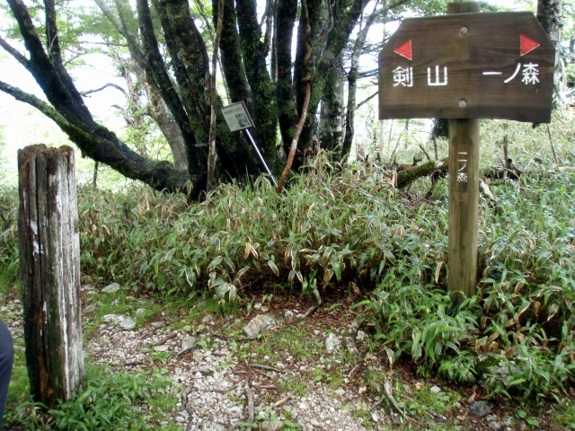 20130629剣山一ノ森4