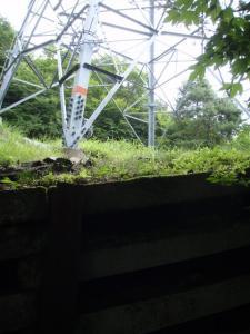 20100708東赤石山03