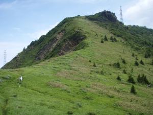 20100708東赤石山05