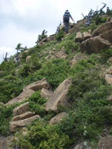 20100708東赤石山06