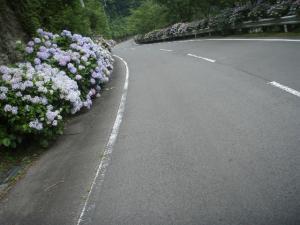 20100708東赤石山01