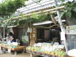 20100802神崎農園2