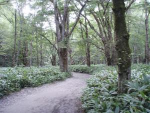 20100912奥穂高岳03