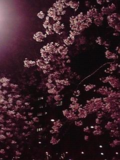 201004011939000.jpg