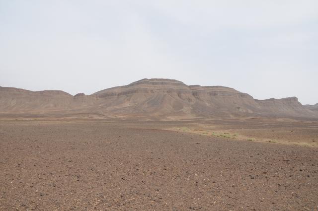 山羊の鳴く岩山