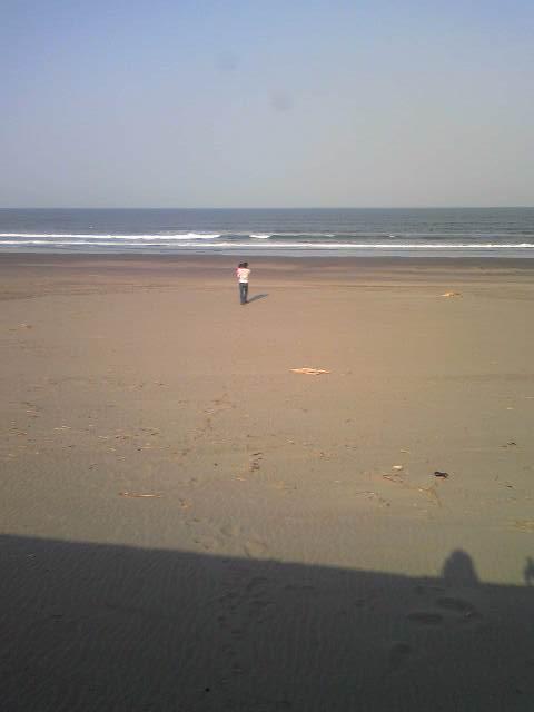 Image08海の親子