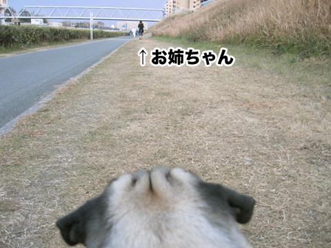 20110123_1.jpg