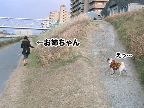 20110123_3.jpg