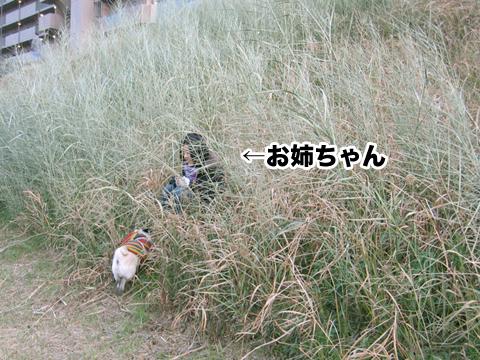 20110123_5.jpg