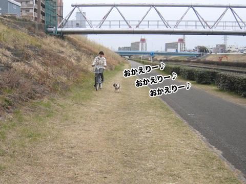 20110223_1.jpg