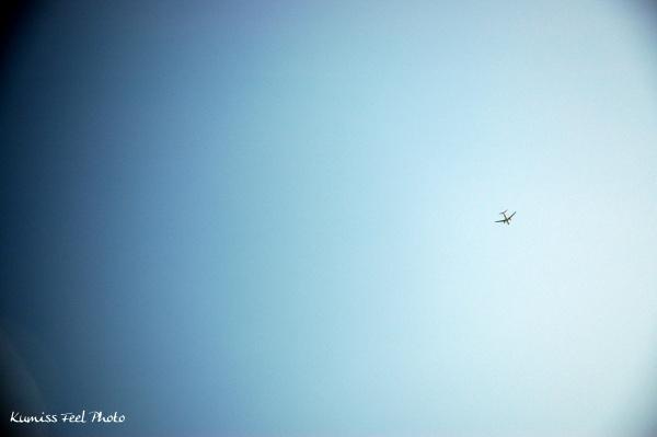 空と飛行機s