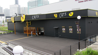 20100530cats.jpg