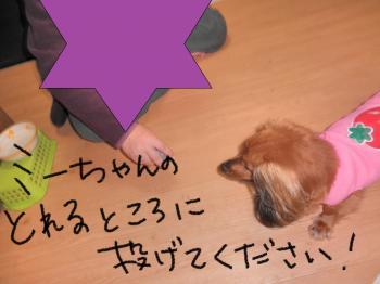 068_convert_20101226151644.jpg