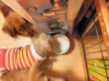 103_convert_20101210005934.jpg