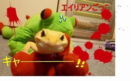もんちゃん 020