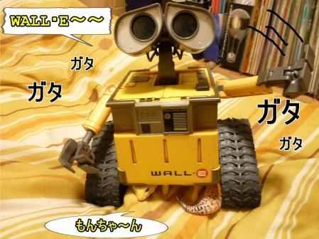 10もんちゃん 043