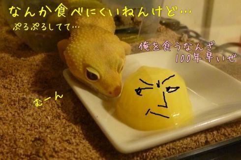 ★もんちゃん 090
