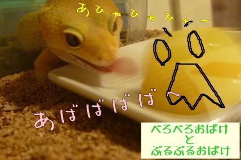 ★もんちゃん 086