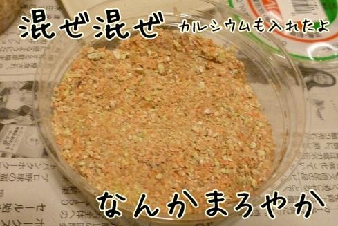 もんちゃん 262