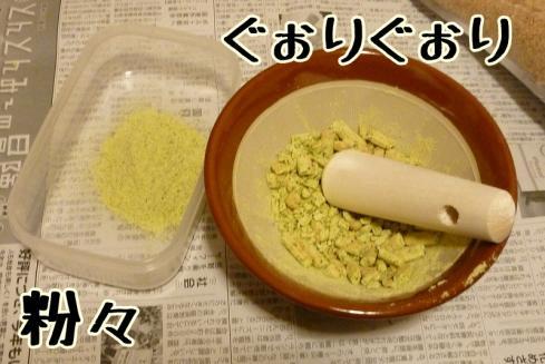 もんちゃん 260