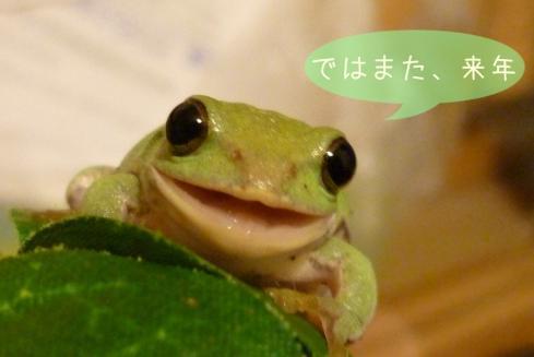 もんちゃん 085