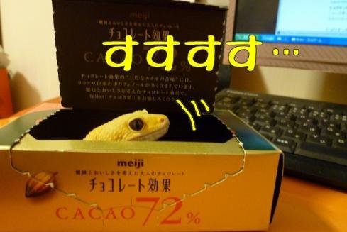 8もんちゃん 309