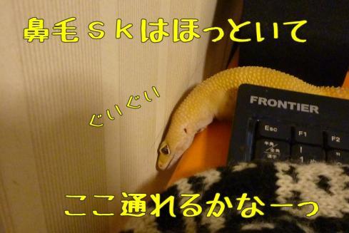 7+もんちゃん 048
