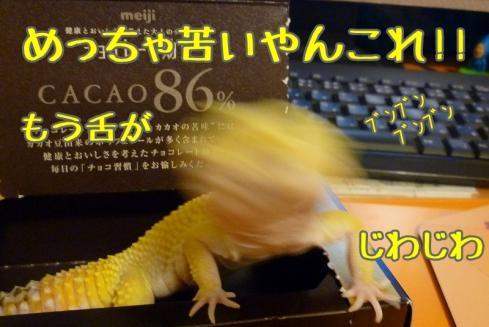 5んちゃん 051