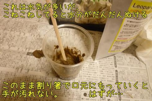 もんちゃん 094