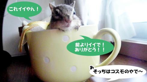 cupsr10