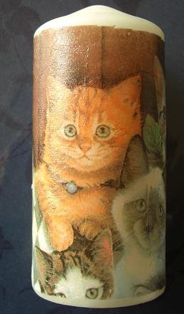 ローソク猫1