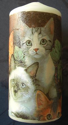 ローソク猫2