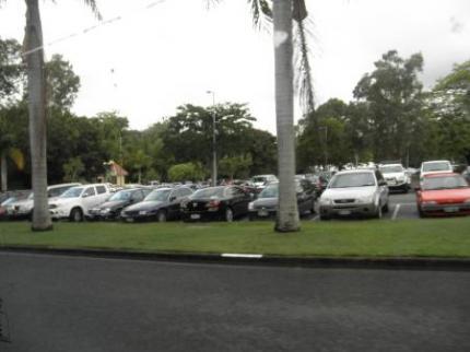 今日もたくさんの車