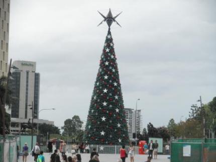 シティホール前のクリスマスツリー