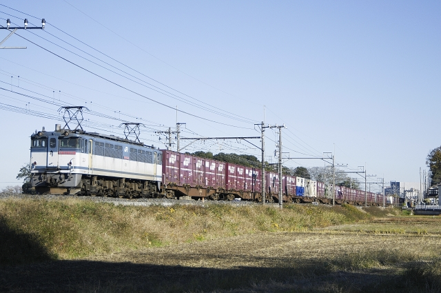 101204-EF651081.jpg