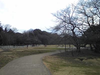 100221_砧公園