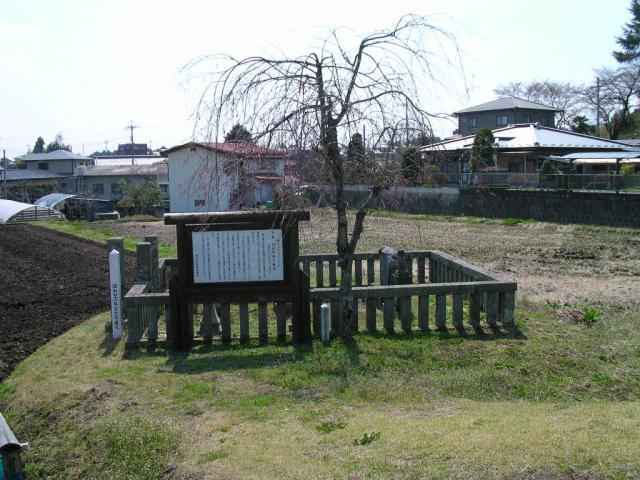 大関増次墓地8