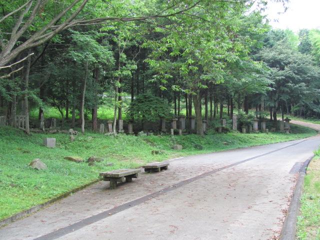 芦野氏新墳墓4