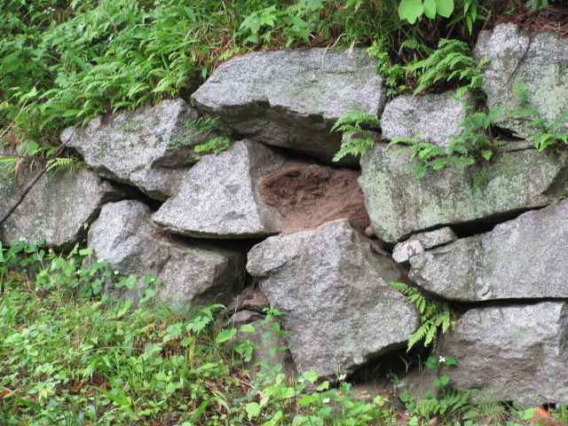 搦め手門東側石垣1