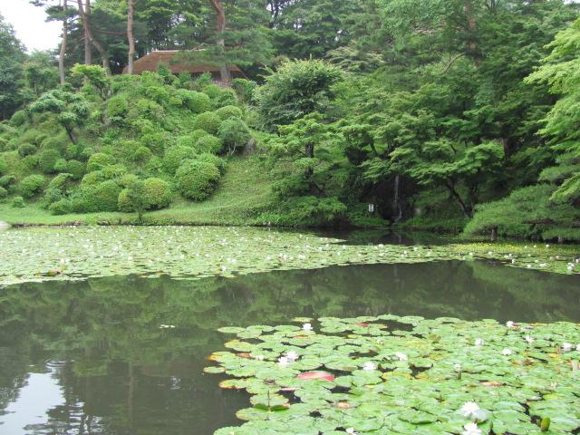 二本松城庭園池1
