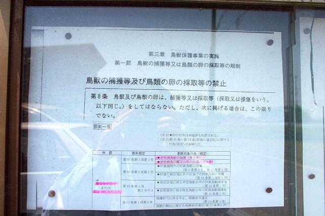 conv0079_20110520204058.jpg