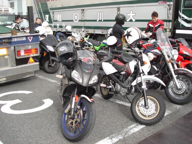 DSC01581.jpg