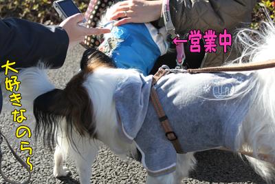 kashiwa_100110_009