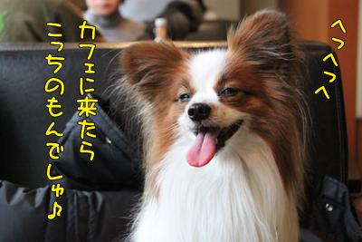 yoyogipark_025