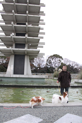 yoyogipark_038