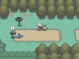 pokemon24.png