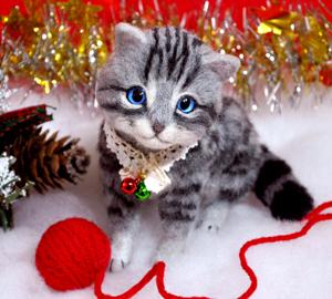 アメショ猫131126 022