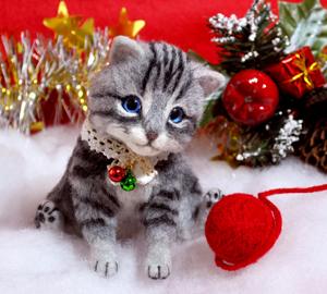 アメショ猫131126 047